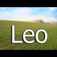 leobigfield