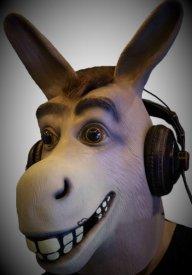 Old Deaf Donkey