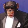 Teh-Monkey-man