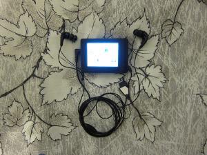 Cowon D2+ & Future Sonics Atrio M5 (MG7).