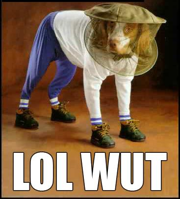 lol-wut-dog.jpg