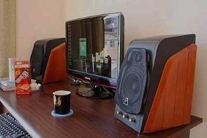 Swans_Desktop.jpg
