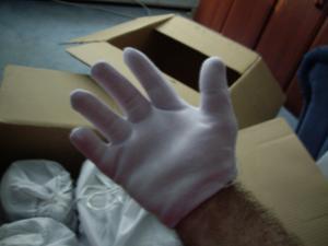 The White Glove