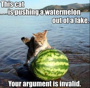 Your_argument_is_invalid_cat_2.jpg