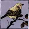 mignola-birdie-100px-headfi.png