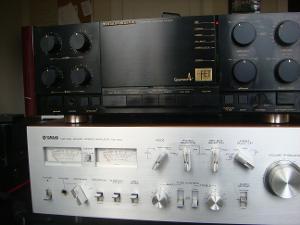 DSC01577.JPG