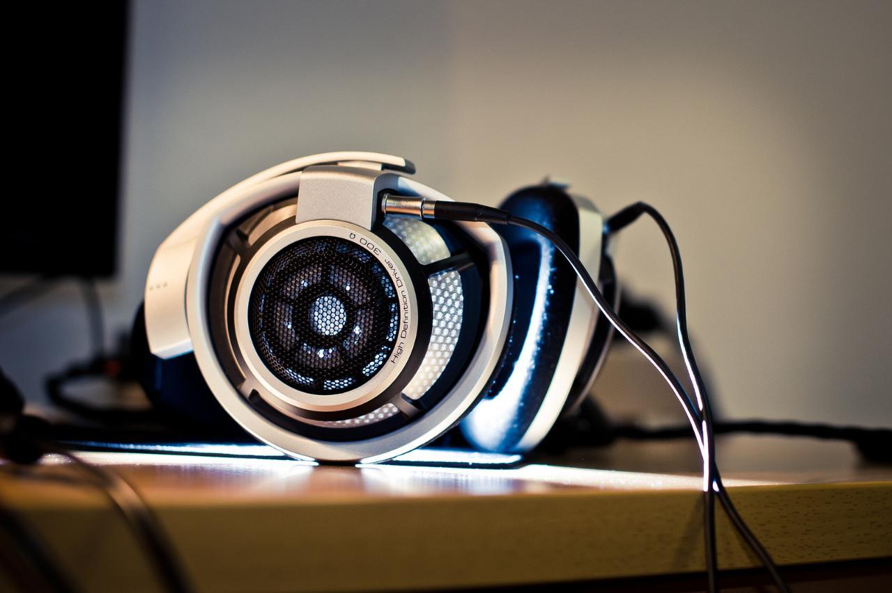 Senn HD800