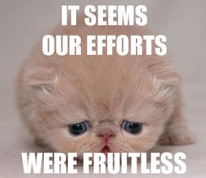 it seems our effots were fruitless.jpg