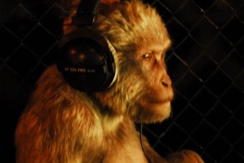 monkey-with-headphones3.jpg