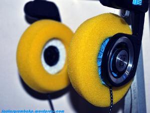 koss portapro w/ felt ring bass lens