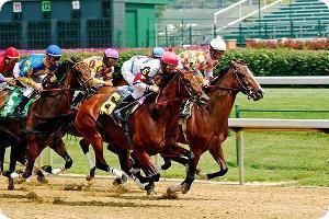 horse_racing.jpg