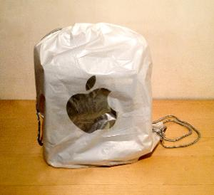 In the bag from the Apple store