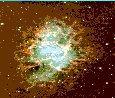 Star-2.jpg