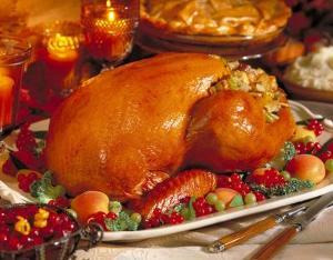 thanksgiving-turkey_c5v.jpg