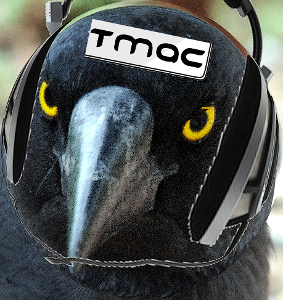 Currawong 4.png