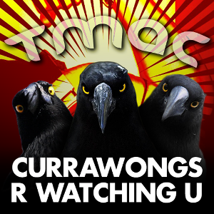 Currawongs new