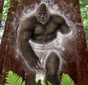 sasquatchpeople.com scaled.png