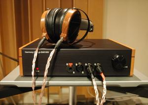 with lcd2.jpg