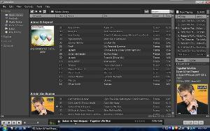musicbee.jpg