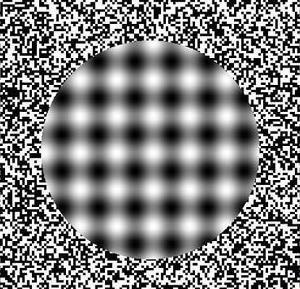 optical-illusions-008.jpg