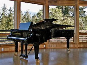 The Ferrari of Pianos!