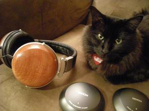 d2000 cat cups lawton audio wood