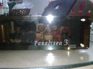 Paradisea 3 Limited Edition in operation