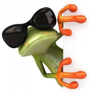 cool-frog-sunglasses.jpg