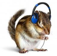 squirrel-headphones.jpg