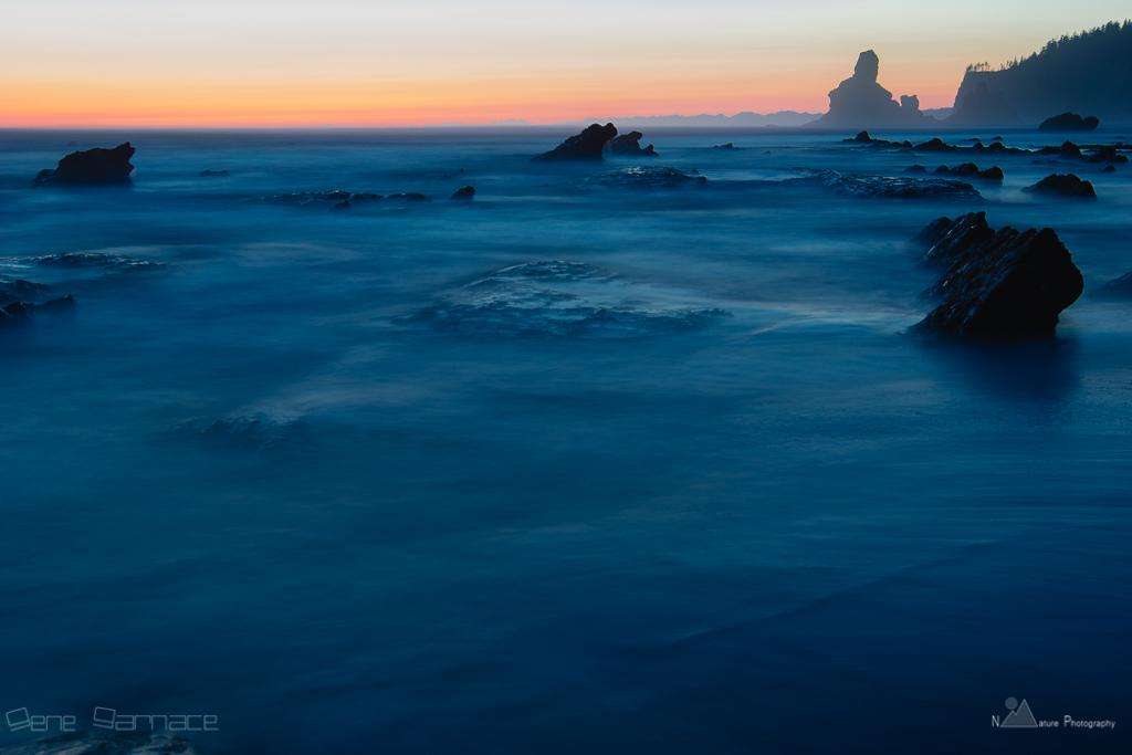 Rugged coast pre-sunrise scene-Olympic National Park, Washington USA