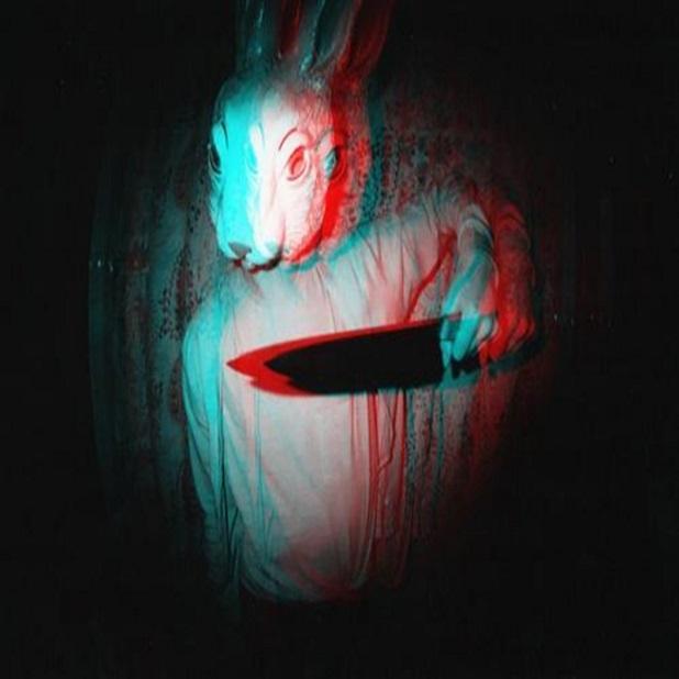bunnies_anaglyph_knives_desktop_800x600_hd-wallpaper-1122685.jpg