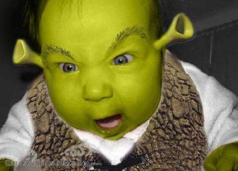 never-post-angry-baby-9-shrek.jpg