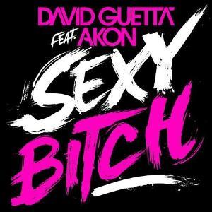 David-Guetta-feat-Akon-Sexy-Bitch-cover.jpg