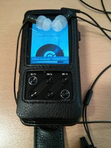 My current rig, FiiO X3 + Zero Audio Carbo Tenore.