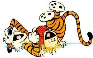 Calvin-Hobbes-s-600x375.jpg