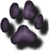 paw_purple_avatar.png