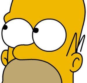 xl_Homer Simpson.jpg