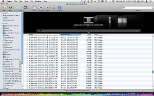 Screen shot 2010-11-25 at 8.38.23 AM.jpg