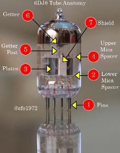 6DJ8 Anatomy - Part 1