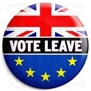 VOTE LEAVE.jpg