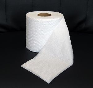 Toilet%20paper.JPG
