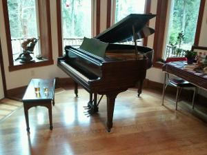 Scrypt.Piano.at.Mintlake.jpg