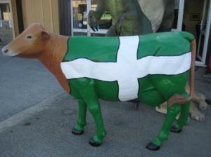 DEVON COW 3.JPG
