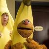 fozzy banana.png