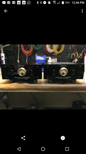 My Wells Audio Custom Headtrip Reference mono Block