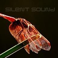 SilentSound