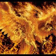 FireFenix
