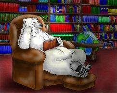 Bookbear