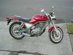 senorx12562