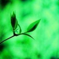 evilgreen5